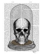 Skull In Bell Jar