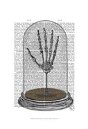 Skeleton Hand In Bell Jar