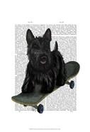 Scottish Terrier and Skateboard
