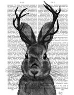 Jackalope with Grey Antlers
