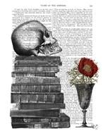 Skull And Books