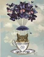 Owl In Teacup