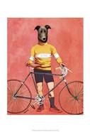 Greyhound Cyclist