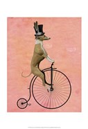 Greyhound on Black Penny Farthing