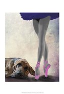 Bloodhound And Ballet Dancer