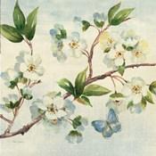 Cherry Bloom II