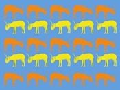 Safari 5