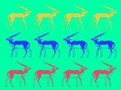 Safari 11