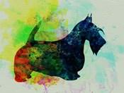 Scottish Terrier Watercolor