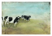 Country Drive Cows II