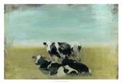 Country Drive Cows III