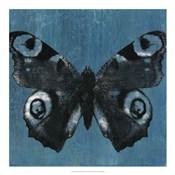 Chambray Butterflies I