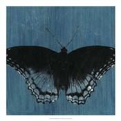Chambray Butterflies II