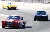Mustang and Corvette Racing
