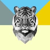 Party Tiger