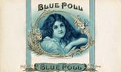 Blue Poll