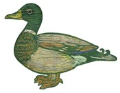Duck Cut Out