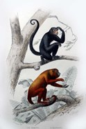 Pair of Monkeys VIII