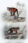 Pair of Monkeys IX