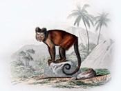 Monkey IX
