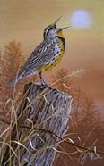 Meadowlark Painting
