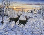 Two Deer In The Moonlight