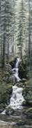 Cascade Wolves