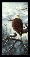 Eagle Rest