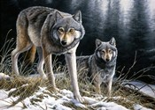 Over The Ridge Wolves