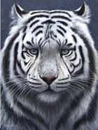 White Tiger Ghost