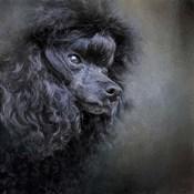 Snack Spotter Toy Black Poodle