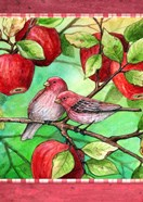 Red Finches With Apples