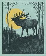 Moose 3