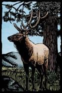 Elk 4