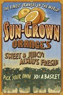 Sun Grown Oranges