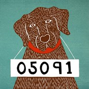Bad Dog 05091 Choc