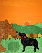 I Meet A Bear Black Autumn