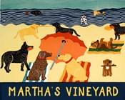 Ocean Ave Martha's Vineyard