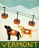 Vermont Ski Patrol Black
