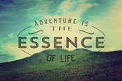 The Essence Of Life