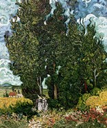 The Cypresses