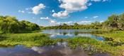 Deer Prairie Creek Preserve, Sarasota County, Venice, Florida