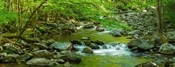 Creek in Great Smoky Mountains National Park, Tennessee