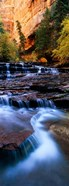 North Creek, Zion National Park, Utah
