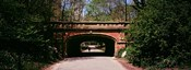 Footbridge in Central Park, Manhattan, New York City