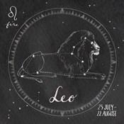 Night Sky Leo