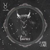 Night Sky Taurus
