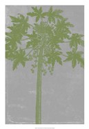 Chromatic Palms IX