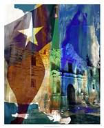 Alamo Flag