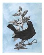 Bird on Blue II